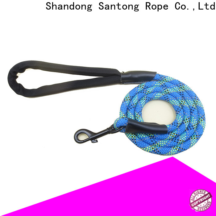 professional dog leads promotion for pet