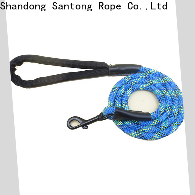 professional dog leads at discount for medium dog