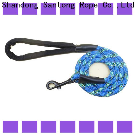 sturdy dog training leash promotion for medium dog