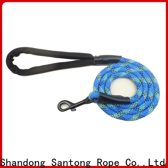professional braided dog leash at discount for medium dog