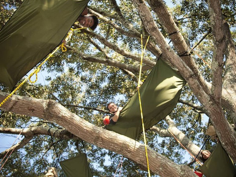 display of  Tree climbing rope