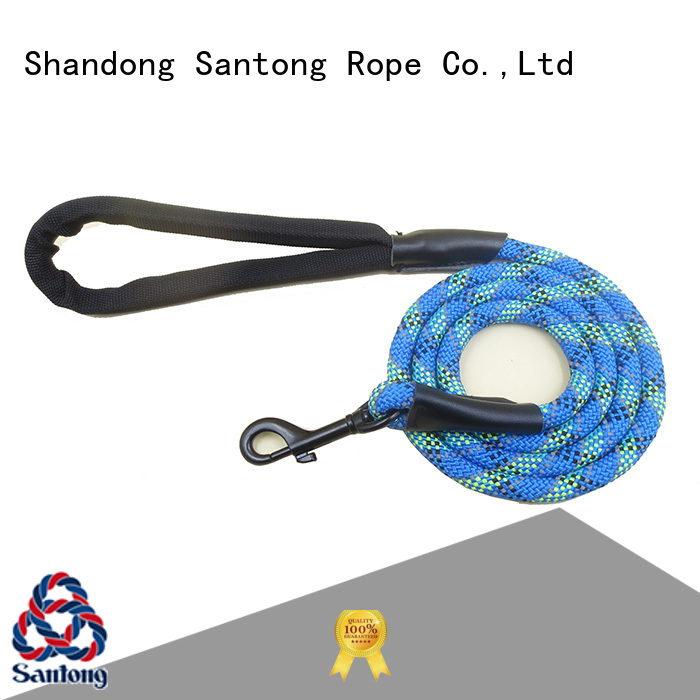 professional pet leash at discount for large dog
